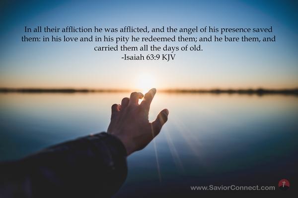 Isaiah 63:9 KJV
