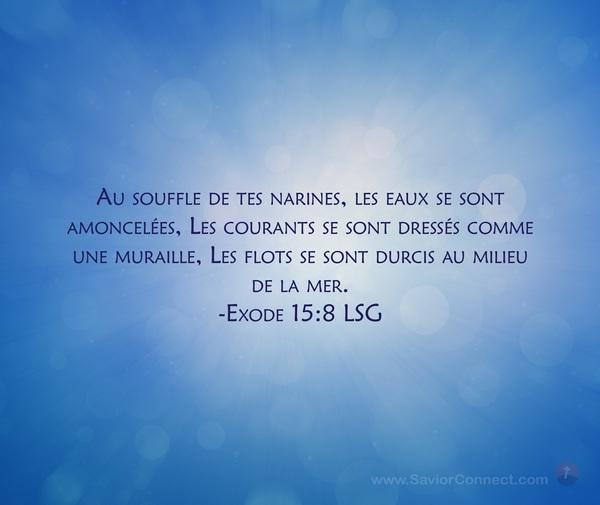 Exode 15:8 LSG