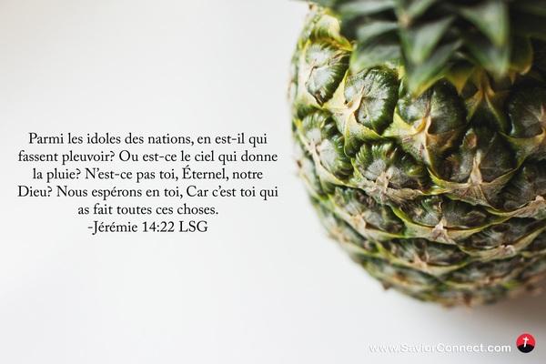 Jérémie 14:22 LSG